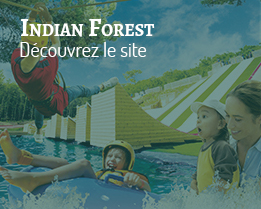 site-indian-forest
